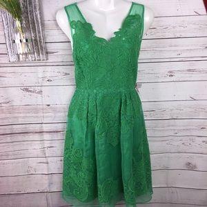BARASCHI/Anthropologie Silk embroidered  dress 8